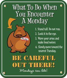 Monday Funnies…